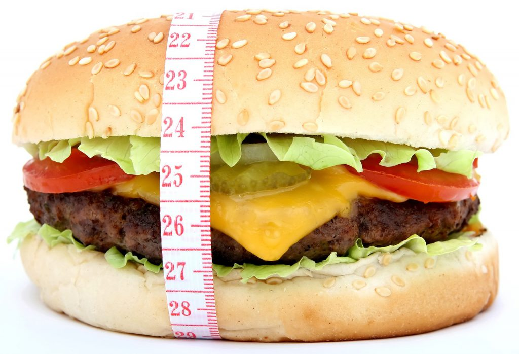 hamburger obesity